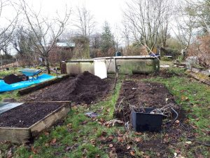 Current raised beds